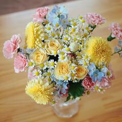 ホッコリ/嬉/幸/プレゼント/可愛い/癒やしカラー/... 母の日&Birthday♡ありがとう(*…