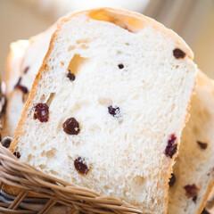 至福の一時/幸せの時間/ふわふわ/レーズン食パン/食パン/キッチン/... レーズン食パン♡ クネクネする位ホワンホ…