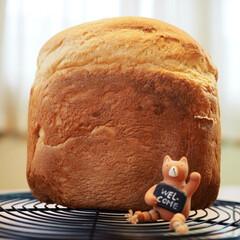 幸せの香り/蜂蜜ミルク食パン/ホームベーカリー/食パン/キッチン/暮らし マッタリ曜日♡パン曜日🍞 家中パンの香り…(2枚目)