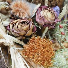 アンティークチックな色合い/落ち着く/癒されるもの/生花/可愛い/ドライフラワー/... 2月に吊した💐お花達が イー感じに仕上が…