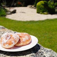 ふわふわ/モチモチ/糖粉/ドーナツ/暮らし お友達のお家で手作りモチモチドーナツを♡…(1枚目)