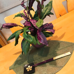 おでかけ/風景/旅行/おうちごはん/ハンドメイド/雑貨/... 箔押し体験をしてお箸と箸置きを作りました…