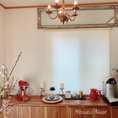 HARIO ハリオ ティードリッパーラルゴスタンドセット TDR-8006T ティーポッド 紅茶 アイスティー | ハリオ(ドリッパー)を使ったクチコミ「我が家のキッチンカウンターです。 先日購…」(2枚目)