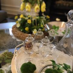 ホームパーティー/パーティー/リミアな暮らし/LIMIAな暮らし/インテリア雑貨/ウイスキー/... この蓋付きのグラス何を飲むグラスかわかり…