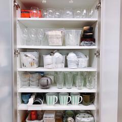 ティーカップ/コーヒーカップ/食器/テーブルウェア/カップボード/キッチン/... ステイホーム週間🏠我が家の普段使いの食器…