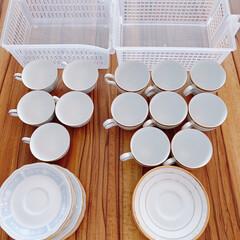 ティーカップ/コーヒーカップ/食器/テーブルウェア/カップボード/キッチン/... ステイホーム週間🏠我が家の普段使いの食器…(2枚目)