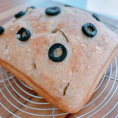 ブラックオリーブ/フォカッチャ/手ごねパン/Mitsuki's nasse/焼きたてのパン/美味しい/... 手作りブランフォカッチャ🍞ブランが香ばし…