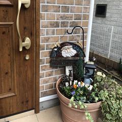 リクシル玄関ドア/ガーデニング/フォロー大歓迎/クリスマス 久しぶりの土いじりは癒される〜😊サンタさ…