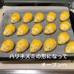グルメ/フード/スイーツ/おうちごはん/おうちごはんクラブ 立派なサツマイモをいただいたので、スイー…(6枚目)