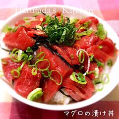 マグロ/おうちごはん Harutada's Kitchen ハ…