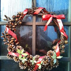 リース作り/松ぼっくり/ドングリ/クリスマス リース自作です。 藤の蔓に子供と拾ってき…