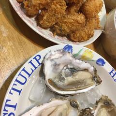 生ガキ/生牡蠣/カキフライ/ごはん 今日はカキフライと生牡蠣 今の時期は美味…