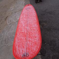 自作/ロングボード/サーフィン/サーフボード/DIY これも自分でシェープしたロングボード シ…