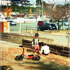 幼児/秋/公園 近所の公園で子どもたちを遊ばせた時の1枚…
