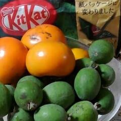 果物/柿/お弁当/フォロー大歓迎 次女が「買い弁だけど」と 具合の悪くなっ…(2枚目)