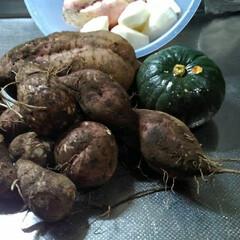 里芋/サツマイモ/秋の食材/フォロー大歓迎 秋の作物 さつまいも(安納芋)と里芋 一…(2枚目)