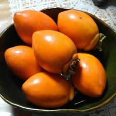 柿/秋の果物/フォロー大歓迎 ふで柿をご近所から頂きました 柿は好きだ…