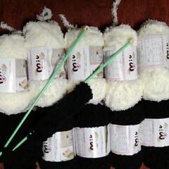 ハンドメイド/セリア セリアの毛糸Miu、白5個、黒2個で マ…(5枚目)