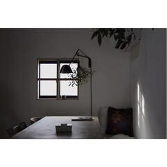 植物のある暮らし/格子窓/インテリア/住まい