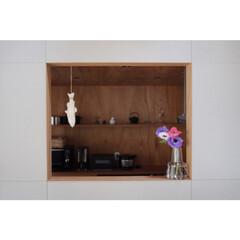 植物のある暮らし/アネモネ/キッチン