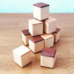 ガラガラ/玩具/LIMIAインテリア部/雑貨/ハンドメイド/わたしの手作り あずきで作ったマラカスキューブ