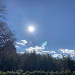 神奈川県愛川/お墓参り 10時間前 今年最後のお墓参りです。(2枚目)