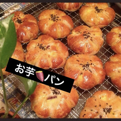 お芋🍠パン/自家製天然酵母パン 数日前に焼いたパンもまだ、残っているので…