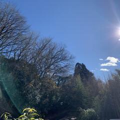 神奈川県愛川/お墓参り 10時間前 今年最後のお墓参りです。(4枚目)