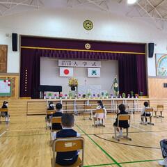 入学式 昨日、入学式の写真です。 父兄は、1家族…(2枚目)
