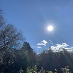 神奈川県愛川/お墓参り 10時間前 今年最後のお墓参りです。