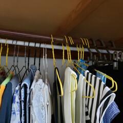 整理整頓/ファッション 服で溢れかえってる? ハンガーを逆向きに…