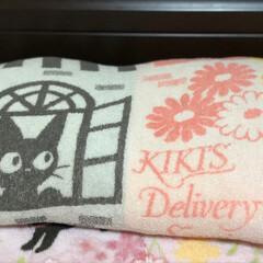 にゃんこ/誕生日プレゼント/ジジ 昨日私の誕生日だったので娘がジジの枕カバ…