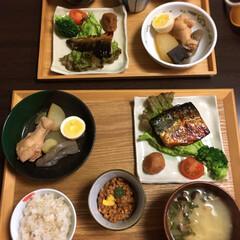 鶏大根/鯖の西京焼き/ごはん 今日は主人が飲み会なので娘と2人で夕飯を…
