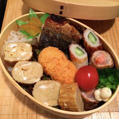 わっぱ弁当/鯖の西京焼き/ごはん 鯖の西京焼きとか 自家製冷凍食品の肉巻き…