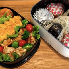 お弁当/ピクニック/わたしのごはん 昨晩いきなり、本日の予定がピクニックに決…