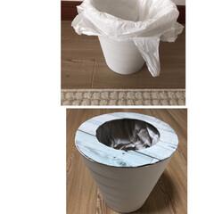 ゴミ箱 ふた/ゴミ箱リメイク/ゴミ箱 ゴミ箱に蓋を作ってみた!