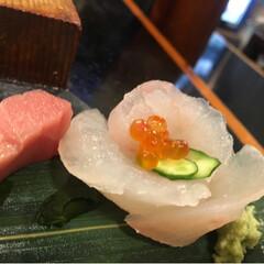 刺身/武蔵小山/寿司 こんな居心地の良いお店が なくなってしま…