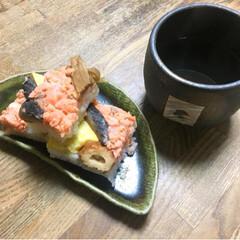 おうちごはん/猫 子供の頃によく作ってもらった 押し寿司を…