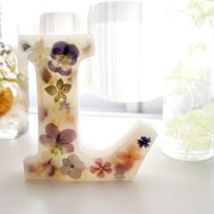 可愛い/プレゼント/癒し/香り/花のある暮らし/インテリア雑貨/... 先日プレゼントで作製しました。 ラベンダ…