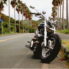 西浦シーサイドロード/バイク/ツーリング/フォロー大歓迎/風景/旅 Dragstar400💨