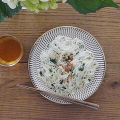アミューズ・ブッシュ ボデガ 7.10860(皿)を使ったクチコミ「今日の昼ごはん 大葉でジェノベーゼ風にし…」
