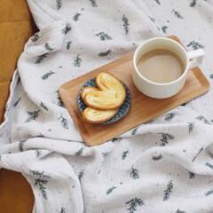 キントー KINTO ノンスリップ レクタン トレイ SSウィロー 6枚セット | キントー(お盆、トレイ)を使ったクチコミ「今日のお菓子は大好きな源氏パイ。  お菓…」