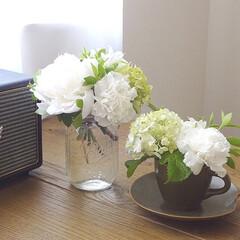Ball メイソンジャー ワイドマウス 500cc 48703(その他キッチン、日用品、文具)を使ったクチコミ「いただいた花束をお部屋の各所に。 メイソ…」