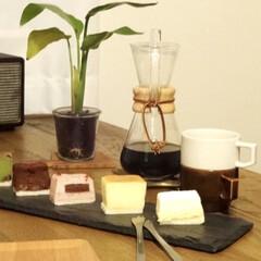CHEMEX コーヒーメーカー 6cup用 東急ハンズ(コーヒーポット)を使ったクチコミ「色々な味のチーズケーキを少しずつ楽しめる…」