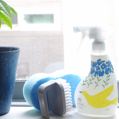 りミアな暮らし/お風呂掃除/おすすめアイテム/暮らし ロハコ限定のバスマジックリンのボトルが可…(1枚目)