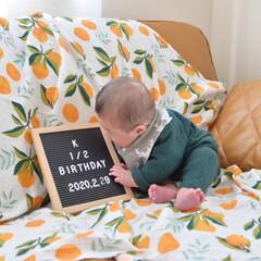 ベビー/キャンドゥ/100均/DIY/キッチン雑貨/雑貨/... 息子が生まれてから、お食い初めやハーフバ…