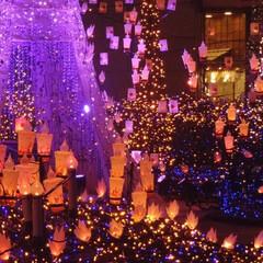 フォロー大歓迎/クリスマス/クリスマスツリー/風景/おでかけ カレッタ汐留なイルミネーション✨ Dis…(2枚目)