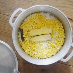 KING無水鍋(R)20 | HALムスイ(両手鍋)を使ったクチコミ「無水鍋でとうもろこしご飯を炊きました。 …」