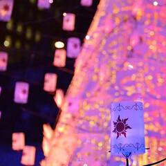 フォロー大歓迎/クリスマス/クリスマスツリー/風景/おでかけ カレッタ汐留なイルミネーション✨ Dis…(3枚目)