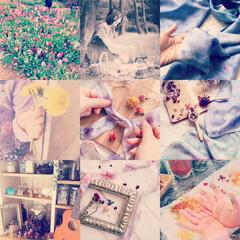 ハーバル染め/草木染め/花びら染め/天然染め/ハーブ 【ハーバル染めは出産と一緒】  誰でもア…